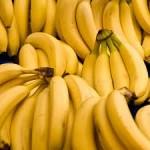 Chengalikodan Banana - News Update 22nd August