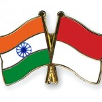 Flag-Pins-India-Indonesia