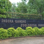 Indira-Gandhi-Zoological-Park